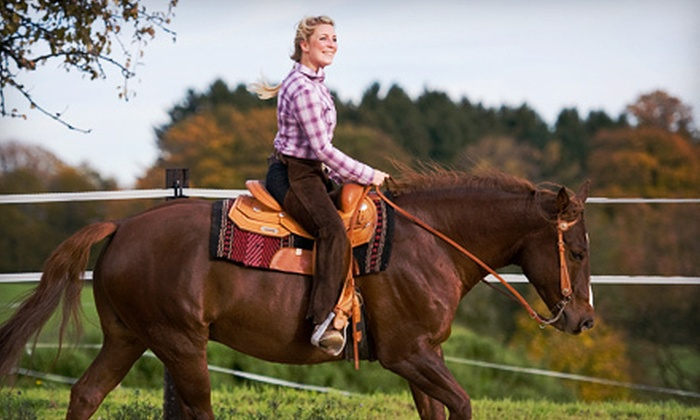 The Lazy Horse Equine Center & Hannanna Stables - Milton: Lessons at The Lazy Horse Equine Center & Hannanna Stables in Ballston Spa (Up to 70% Off). Three Options Available.