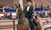 Up to 55% Off Horse-Handling Lessons in Sauquoit