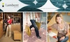 Lambent Services - Flatiron District: $49 for Four Hours of Personal Assistant Services and Complimentary Membership to Lambent Services ($410 Value)