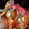 53% Off at Ripley's Believe It or Not