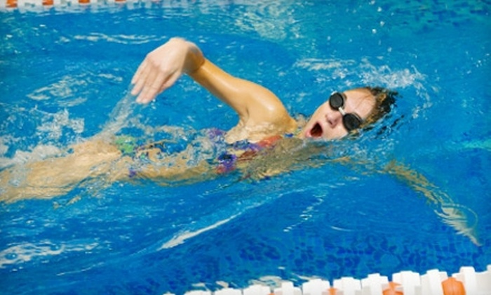 Catch the Wave Swim Club - South Beloit: $40 for Eight Group Swimming Lessons at Catch the Wave Swim Club ($86 Value)