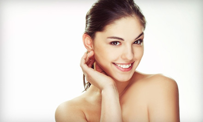 The Downtown Spa & Laser Center - Norfolk: $49 for Microdermabrasion at The Downtown Spa & Laser Center in Norfolk ($100 Value)