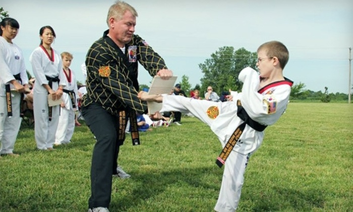Yang Masters United Taekwondo Center - Multiple Locations: $39 for 10 Tae Kwon Do Classes at Yang Masters United Taekwondo Center ($170 Value)