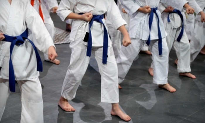 Eternal Martial Arts - Multiple Locations: $25 for One Month of Classes Plus Uniform at Eternal Martial Arts (Up to $148 Value). Two Locations Available.