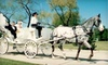 Party Animals Carriage Service - Downtown Dallas: $40 for Half-Hour Carriage Ride from Party Animals Carriage Service (Up to $90 Value)