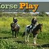 55% Off Horseback Trail Ride in Huntington Beach