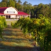 Up to 55% Off Concert or Vineyard Outing in Angier