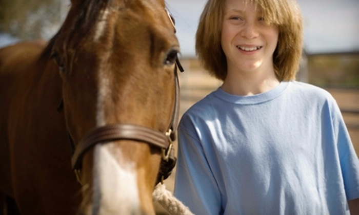 K-I-N Stables - Athens: Four Children's Basic-Horseback-Riding Lessons at K-I-N Stables. Two Options Available.