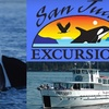 Up to 51% Off Whale-Watching Tour