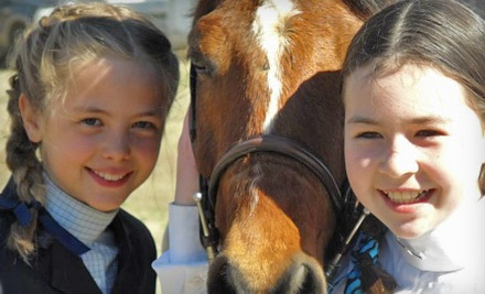 Two 1-Hour Horseback-Riding Lessons (a $90 value) - Indigo Road Farm in Greer