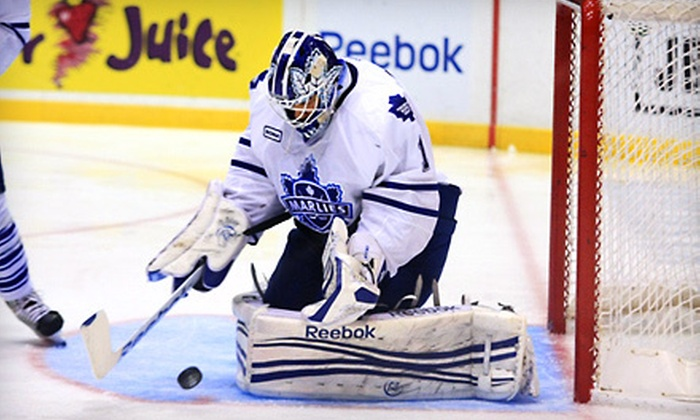 Toronto Marlies - Toronto: Toronto Marlies Hockey Game at Ricoh Coliseum (Up to 41% Off). Three Games and Seating Options Available.