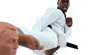 Extreme Martial Arts Centers: $50 for $100 Worth of Martial Arts at Extreme Martial Arts Centers