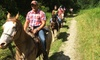 Victory Stables - Washington: Fun on the Ranch with Trail Ride and Lunch for One or Four at Victory Stables (50% Off)