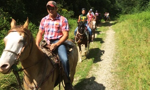 Victory Stables: Fun on the Ranch with Trail Ride and Lunch for One or Four at Victory Stables (58% Off)