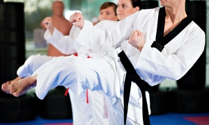 Suncoast MMA: One- or Two-Month Membership to Suncoast MMA (Up to 57% Off)