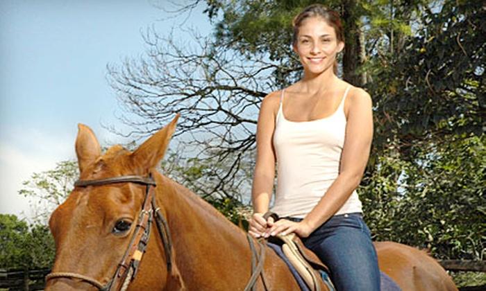 Top Ridge Farms - Oceanside-Escondido: Three Horseback-Riding Lessons or a Weekend Riding Clinic at Top Ridge Farms in San Marcos