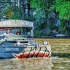 Up to 25% Off Tour Admission from Chattanooga Ducks