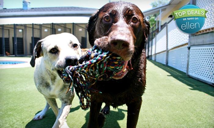 Pet Paradise - Bowden: Pet Paradise 1 Jacksonville