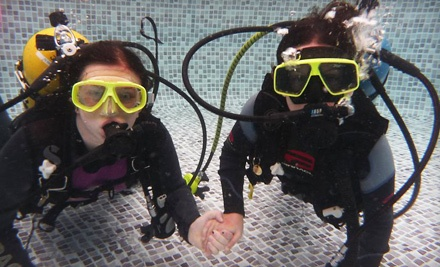 Introductory Scuba Class (a $79 value) - Illinois Institute of Diving in Glen Ellyn