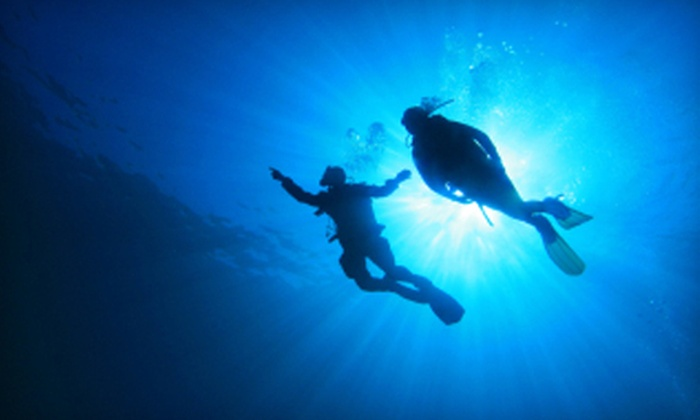 Seascapes USA - Syosset: Discover Scuba Course for One or Two ($130 Value) at Seascapes USA in Syosset