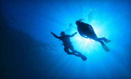 Discover Scuba Course for 1 (a $65 value) - Seascapes USA in Syosset