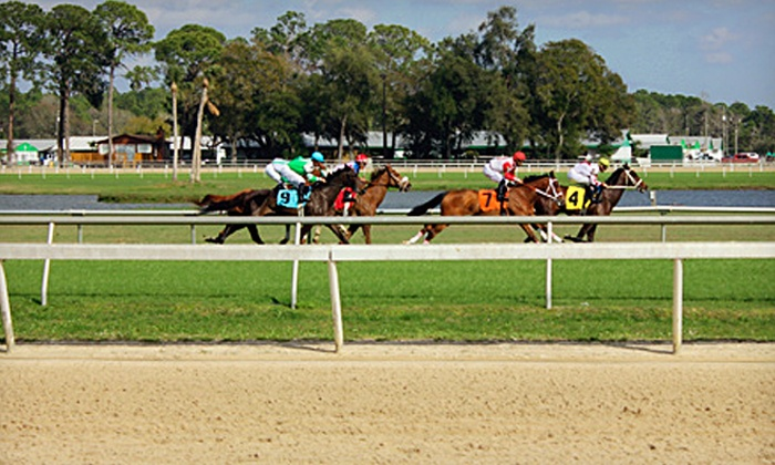 Tampa Bay Downs - Westchase: Horserace Outing or One, Two, Four, or Six with Betting and Food Vouchers at Tampa Bay Downs (Up to 57% Off)