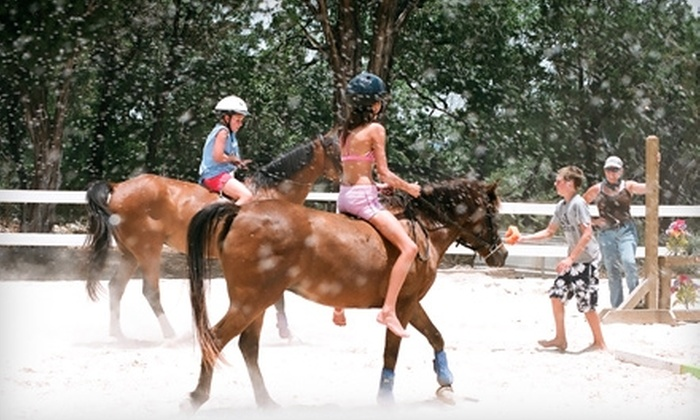 Hill Country Riding Academy - Bulverde Estates: $50 for a Half-Day Camp ($100 Value) or $25 for a One-Hour Riding Lesson ($50 Value) at Hill Country Riding Academy in Bulverde
