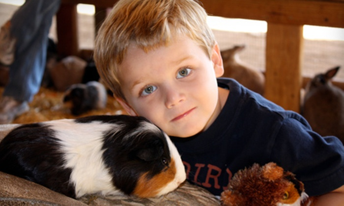 Up To Half Off Petting Zoo Outing In San Juan Capistrano Zoomars