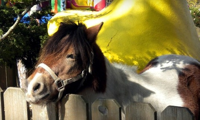 Azoosment Park - Dundee: $28 for a Family Four-Pack Admission to the AZoosment Park at Santa's Village in Dundee