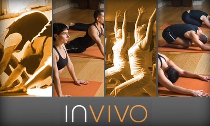 Invivo Wellness - Riverwest: $35 for 10 Yoga Classes and a Personal Training Consultation at Invivo Wellness ($120 Value)