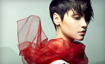 Cut and Style (a $34 value) - Allure Salon Omaha in Omaha