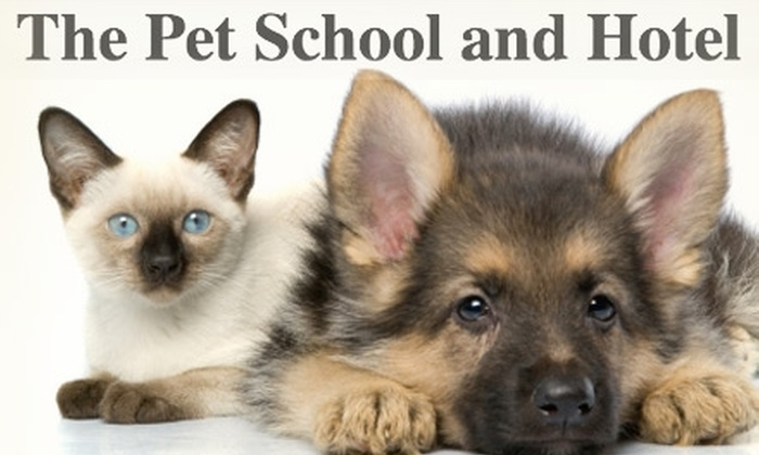 The Pet School and Hotel - East Louisville: $10 for One Night of Boarding at The Pet School and Hotel