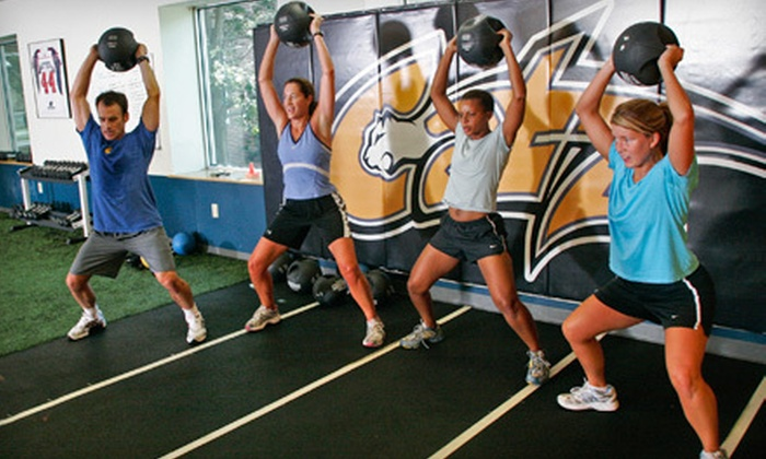 CATZ Sports Performance Training Centers Boston - Multiple Locations: 10 or 15 Adult Training Sessions at CATZ Sports Performance Training Centers (Up to 85% Off). Four Locations Available.