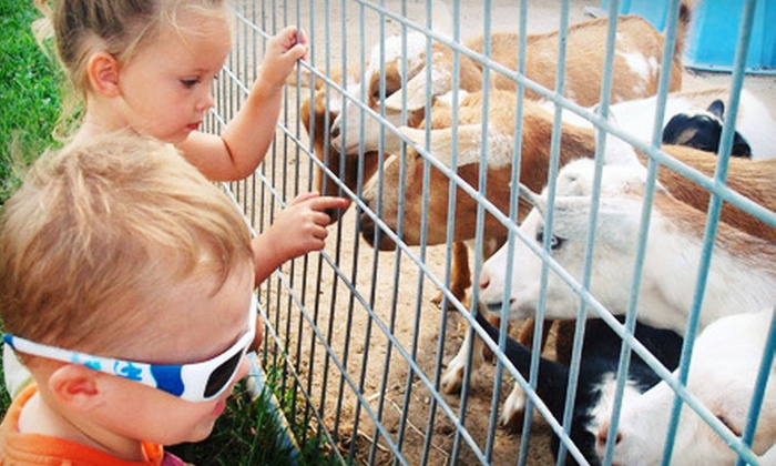 Green Meadows Petting Farm - Waterford: Animal Petting Farm Experience for Two or Four at Green Meadows Petting Farm in Waterford (Up to 52% Off)