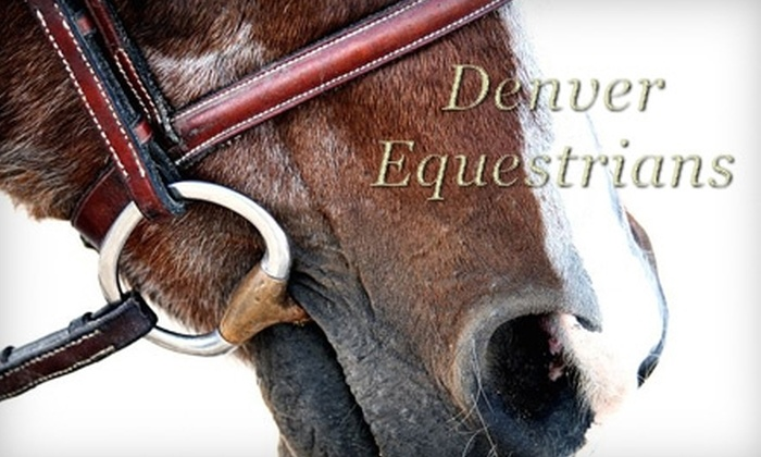 Denver Equestrians - Sedalia: $49 for 90-Minute Introductory Horsemanship Lesson at Denver Equestrians ($125 value)