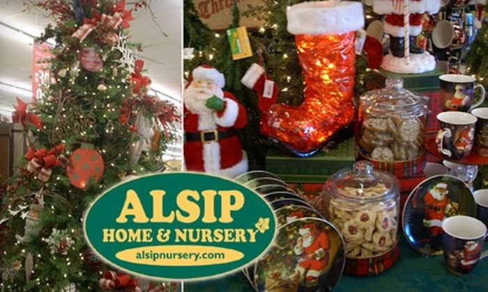 Alsip Home & Nursery - Multiple Locations: $19 for $40 Worth of Christmas Trees, Wreaths, and More at Alsip Home & Nursery