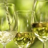 $5 for Wine Tasting at The Wine Cellar