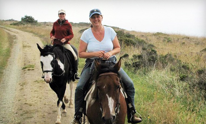Willow Tree Stables - West Novato: $50 for a 60-Minute Horseback Trail Ride for Two from Willow Tree Stables in Novato ($100 Value)