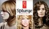 Splurge Salon - Denton: $50 for $100 Worth of Designer Stylings and More at Splurge Salon in Highland Village