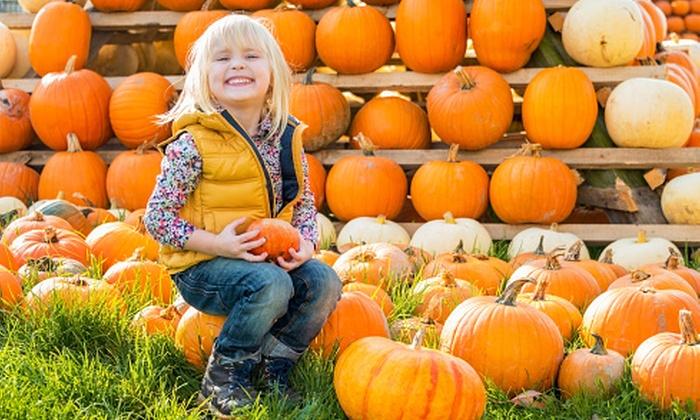 Mega Events- Oktober Pumpkin Fest - Toyota Park: Single-Day Admission for Two or Four Including Parking at Oktober Pumpkin Fest on October 15–18 (Up to 59% Off)