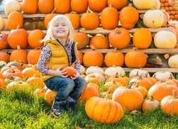 Mega Events- Oktober Pumpkin Fest: Single-Day Admission for Two or Four Including Parking at Oktober Pumpkin Fest on October 15–18 (Up to 59% Off)