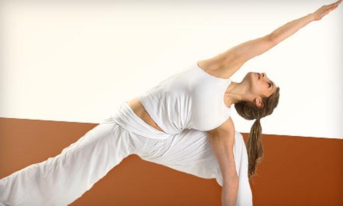 Yoga Planet Studio - Rochester: $25 for 25 Yoga Classes at Yoga Planet Studio in Rochester Hills (Up to $250 Value)