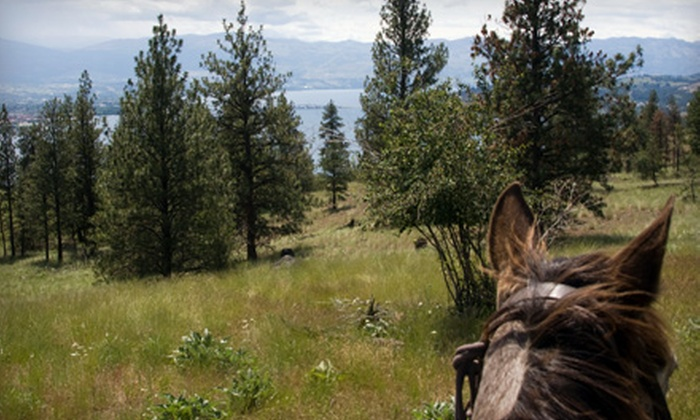 Hidden Haven Farms - Jamul: Horseback Riding for Two or Farm Field Trip for 10 at Hidden Haven Farms in Jamul (Half Off)