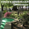 53% Off Family Fun at Vince's Sports Center