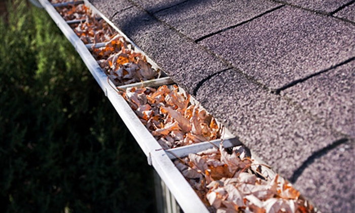 GW Home Improvement - Memphis: Gutter Cleaning with Optional Roof Inspection from GW Home Improvement (Up to 62% Off)
