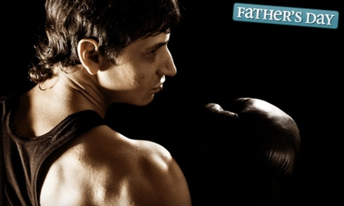 North Texas Mixed Martial Arts - Flower Mound: $25 for Ten Boxing, Kickboxing, or Jujitsu Classes at North Texas Mixed Martial Arts in Flower Mound