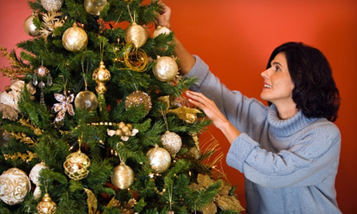 Toby's Christmas Trees - San Francisco: $39 for a Fir Christmas Tree Up to 10 Feet Tall at Toby's Christmas Trees in Walnut Creek (Up to $80 Value)