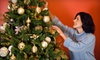 Tobys Trees - Danville: $39 for a Fir Christmas Tree Up to 10 Feet Tall at Toby's Christmas Trees in Walnut Creek (Up to $80 Value)