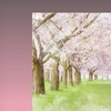 $32.99 for a Scenic Canvas Print