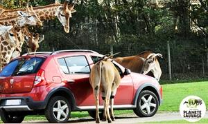 Planete sauvage: Une entrée tarif unique pour le parc animalier de type safari et partie piétonne à 21 € chez Planète Sauvage